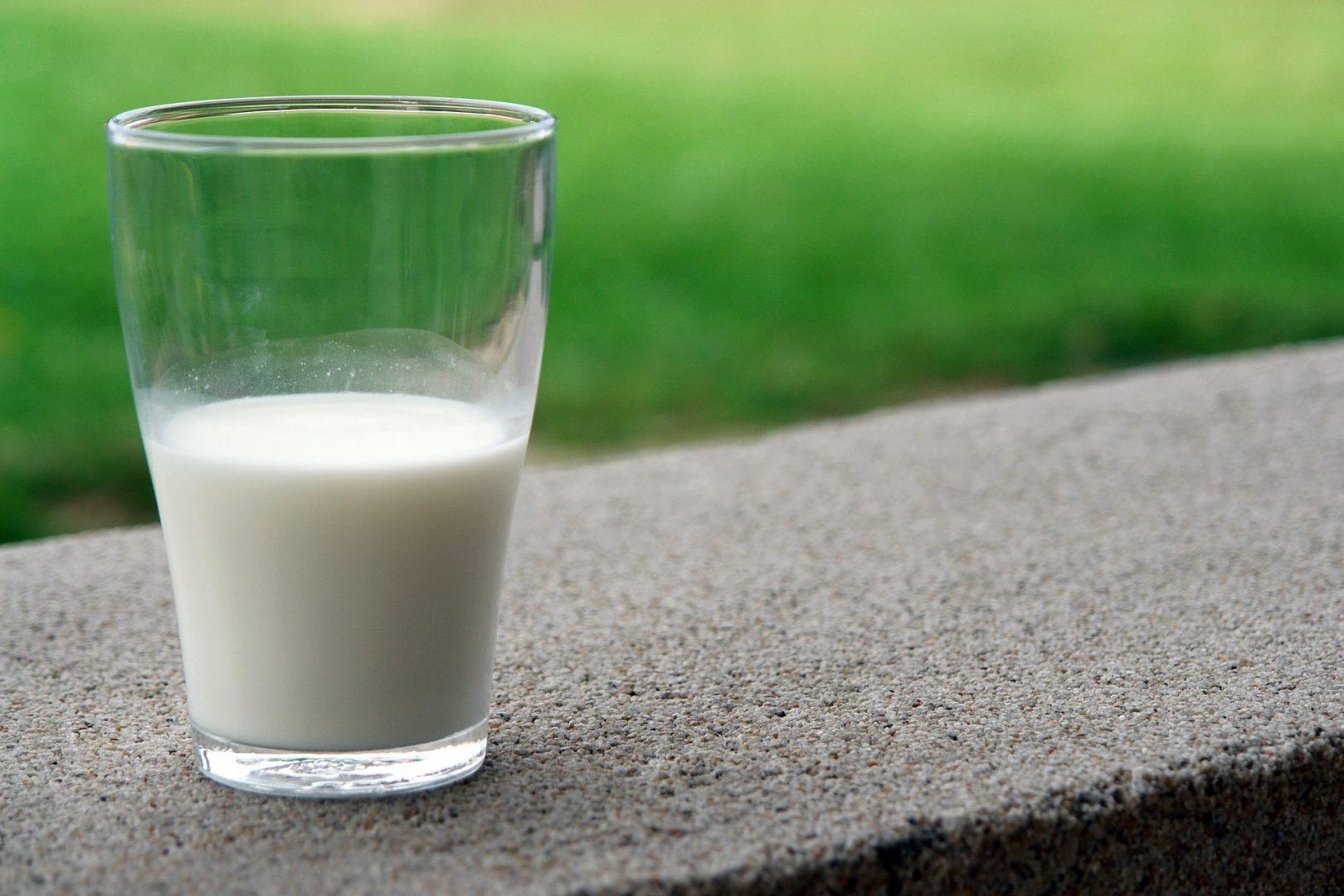 Los lácteos y la importancia de los minerales